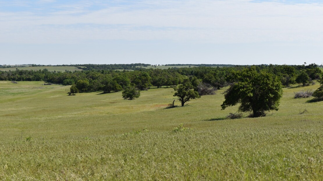 1 - Caddo County, OK - Farm and Ranch with Land