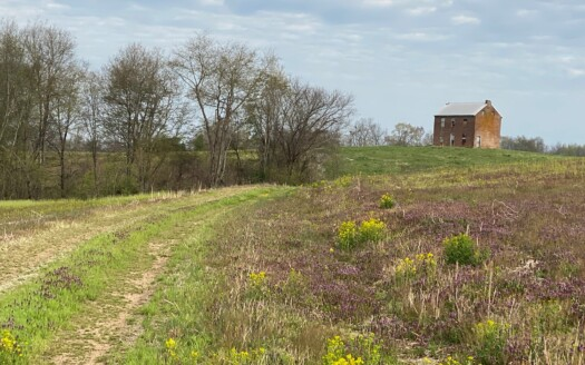 1 - Taylor County, KY Farm and Land For Sale
