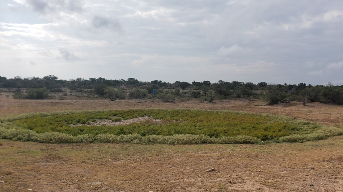 15 - Val Verde County, TX Ranch and Land For Sale