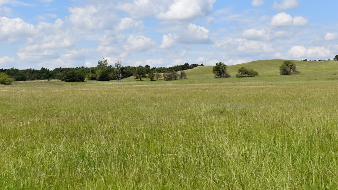 16 - Caddo County, OK - Farm and Ranch with Land