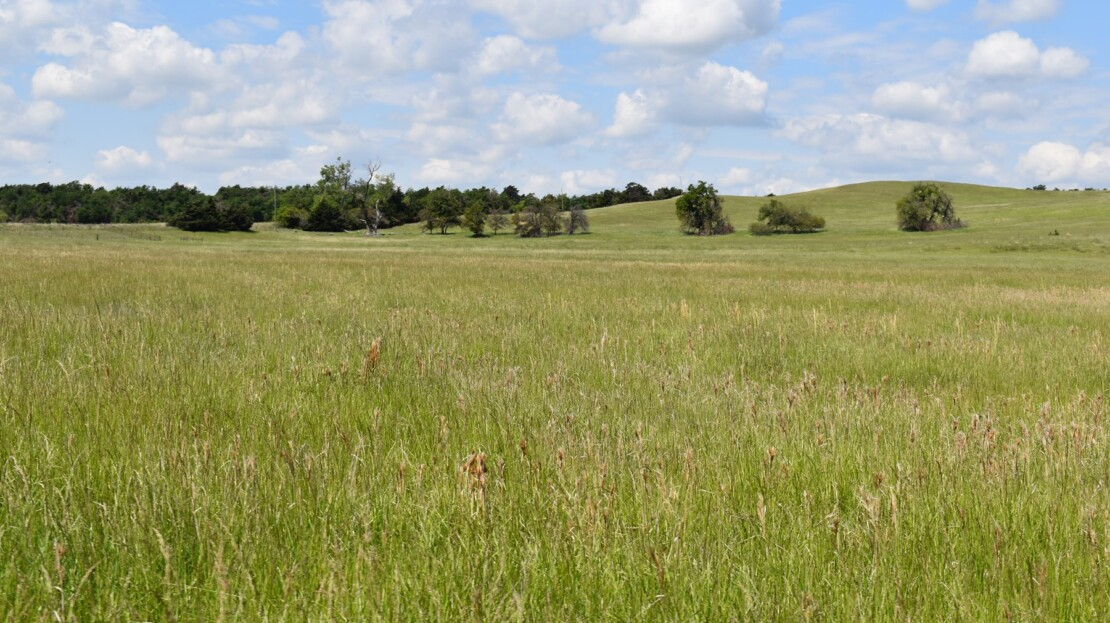 17 - Caddo County, OK - Farm and Ranch with Land