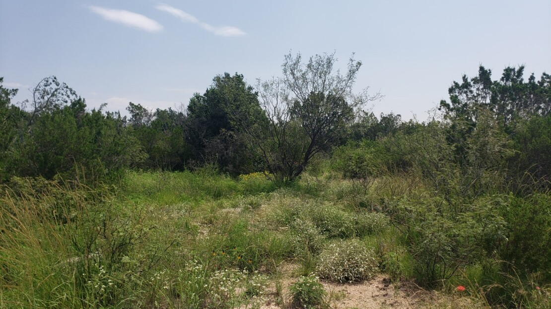 21 - Val Verde County, TX Ranch and Land For Sale