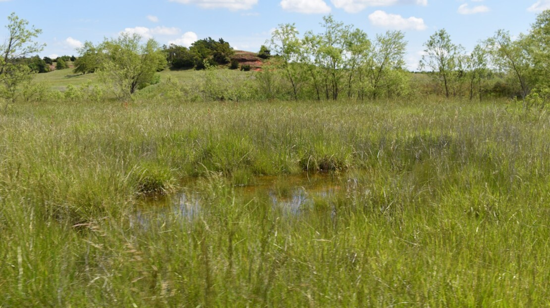 23 - Caddo County, OK - Farm and Ranch with Land