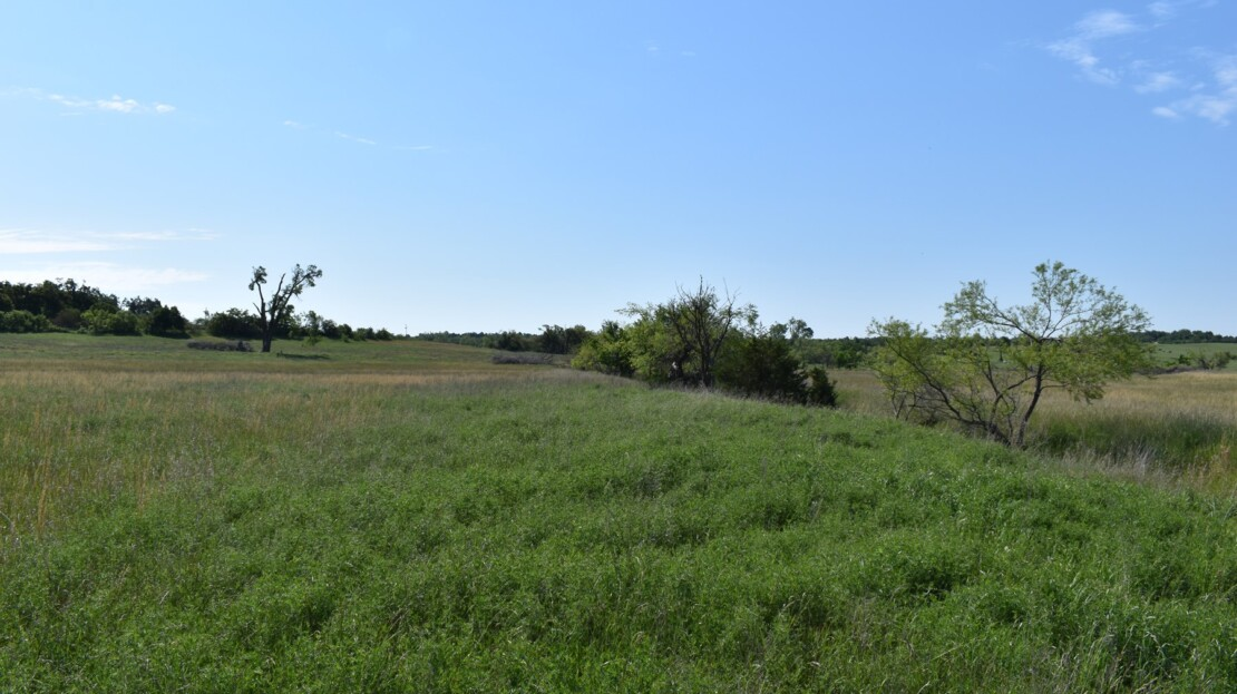 24 - Caddo County, OK - Farm and Ranch with Land