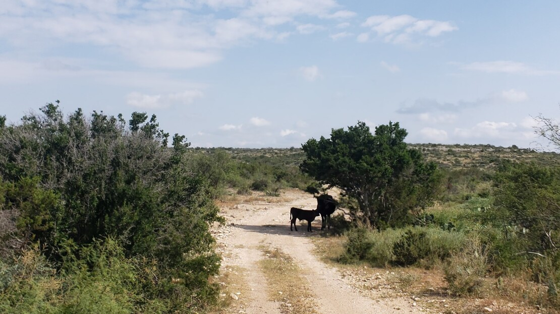 24 - Val Verde County, TX Ranch and Land For Sale