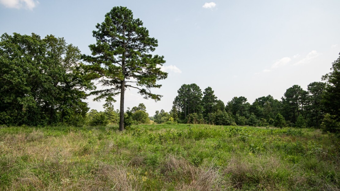 25 - Pittsburg County, OK Cattle Ranch and Land For Sale