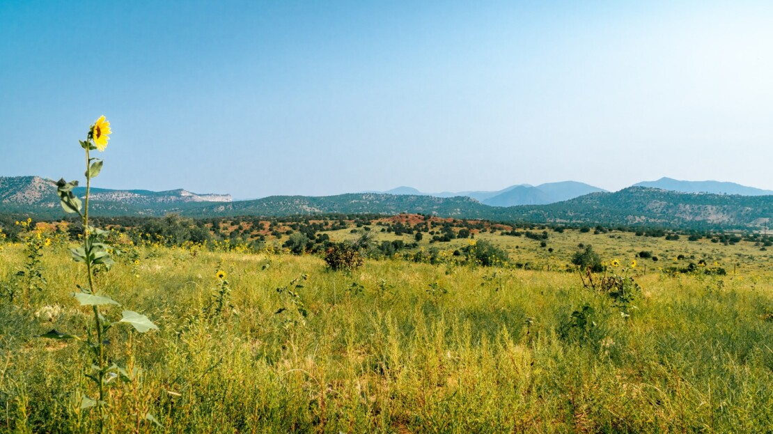 5 - Fremont County, CO Ranch & Land For Sale
