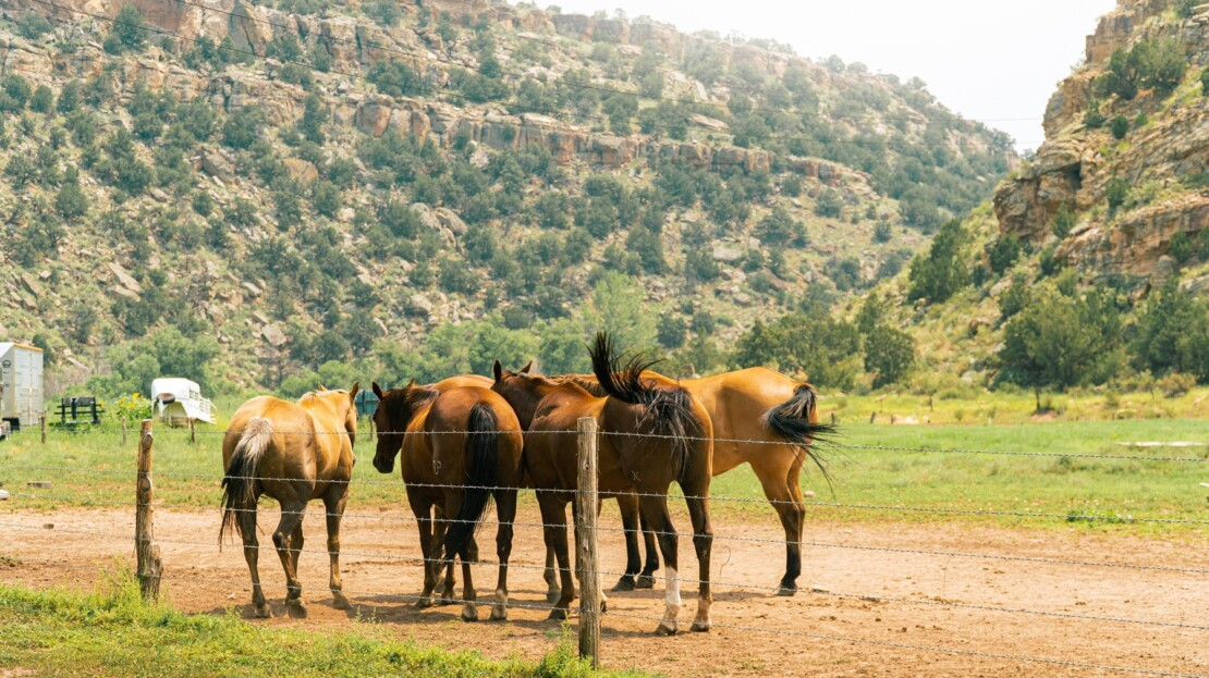 8 - Fremont County, CO Ranch & Land For Sale