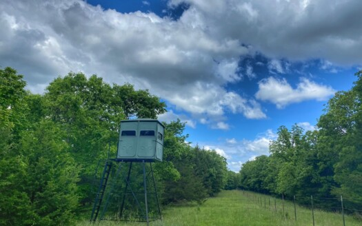 1 - Benton County, MO Hunting Land For Sale