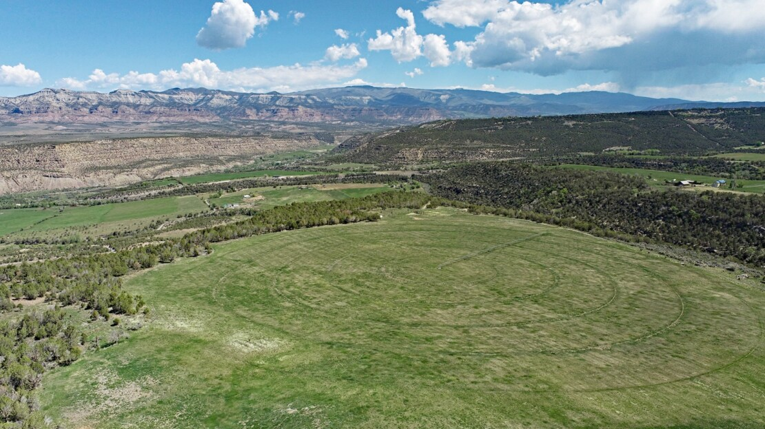 22 - Mesa County, CO Farm, Ranch and House For Sale