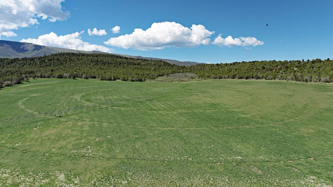 24 - Mesa County, CO Farm, Ranch and House For Sale