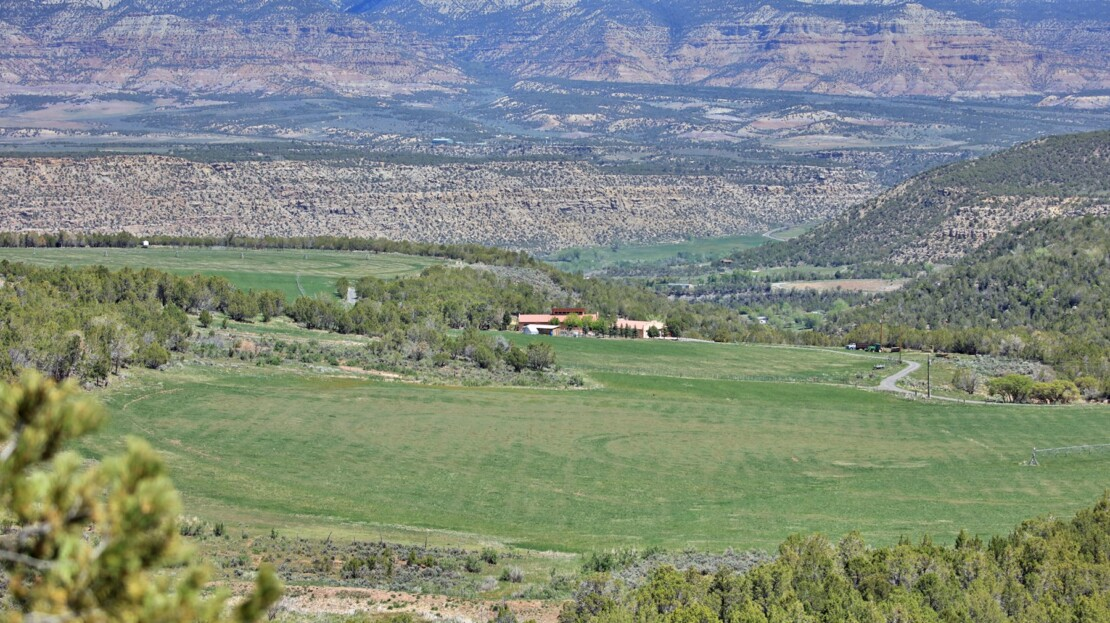 4 - Mesa County, CO Farm, Ranch and House For Sale